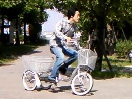 ... 福祉用3輪自転車の走行性能